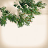 Christmas tree on vintage background — Stock Photo