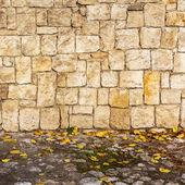 Sfondo del muro grunge con fogliame — Foto Stock