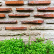 Wall built of natural stone. Can be used as background — Stock Photo