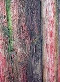 Vieux bois de grunge — Photo