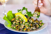 Fresh grilled mussels with herbs and lemon on white plate, selec — Stock Photo
