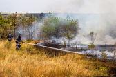 Odessa, Ukraine - August 4, 2012: Severe drought. Fires destroy  — Stock Photo
