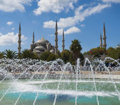 View of the Blue Mosque in Istanbul — Stock Photo