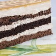 Stock Photo: Layered spong cake on plate