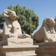 Ram sphinxes at Karnak temple — Stock Photo