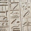 Egyptian hieroglyphic carvings on wall — Foto de Stock