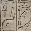 Egyptian hieroglyphic carvings on wall — Stock Photo #19289987