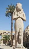 Statue in Karnak temple Luxor — Fotografia Stock