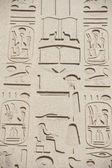 Egyptische hiëroglifische gravures op de muur — Stockfoto