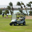 Electric golf buggy on a fairway — Stock fotografie