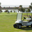 Electric golf buggy on a fairway — 图库照片