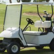 Electric golf buggy on a fairway — Foto Stock