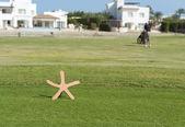 Marqueur de départ sur un parcours de golf avec le golfeur — Photo