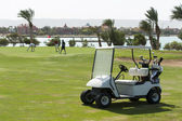 Electric golf buggy on a fairway — Stock Photo