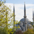 Vie wof the Blue Mosque in Istanbul — Stock Photo #35496037