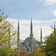 Vie wof the Blue Mosque in Istanbul — Stock Photo