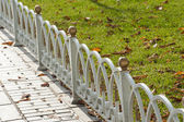 Small border fence in park area — Stock Photo