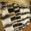 Fur coats hanging on a rail — Stock Photo
