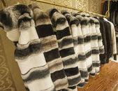 Fur coats hanging on a rail — Stock fotografie