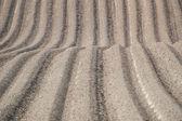 Furrows in plowed field — Stock Photo