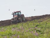 Tractor ploughing agricultural land — Stock Photo