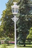 Ornate old street light in gardens — Photo
