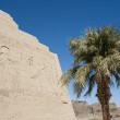 Egyptian hieroglyphic carvings on a temple wall — Stockfoto #8742715