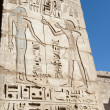 Egyptian hieroglyphic carvings on a temple wall — Stock Photo #8744067
