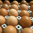 Many eggs in paper tray - Stockfoto
