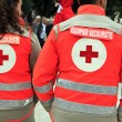 Red cross — Stock Photo #13411543