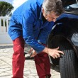 Stock Photo: Inspection of tires