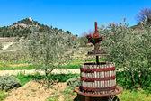 Old wine press — Stock Photo