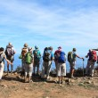 Hikers — Stock Photo #35650443