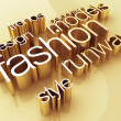 Fashion world — Stock Photo #13368109