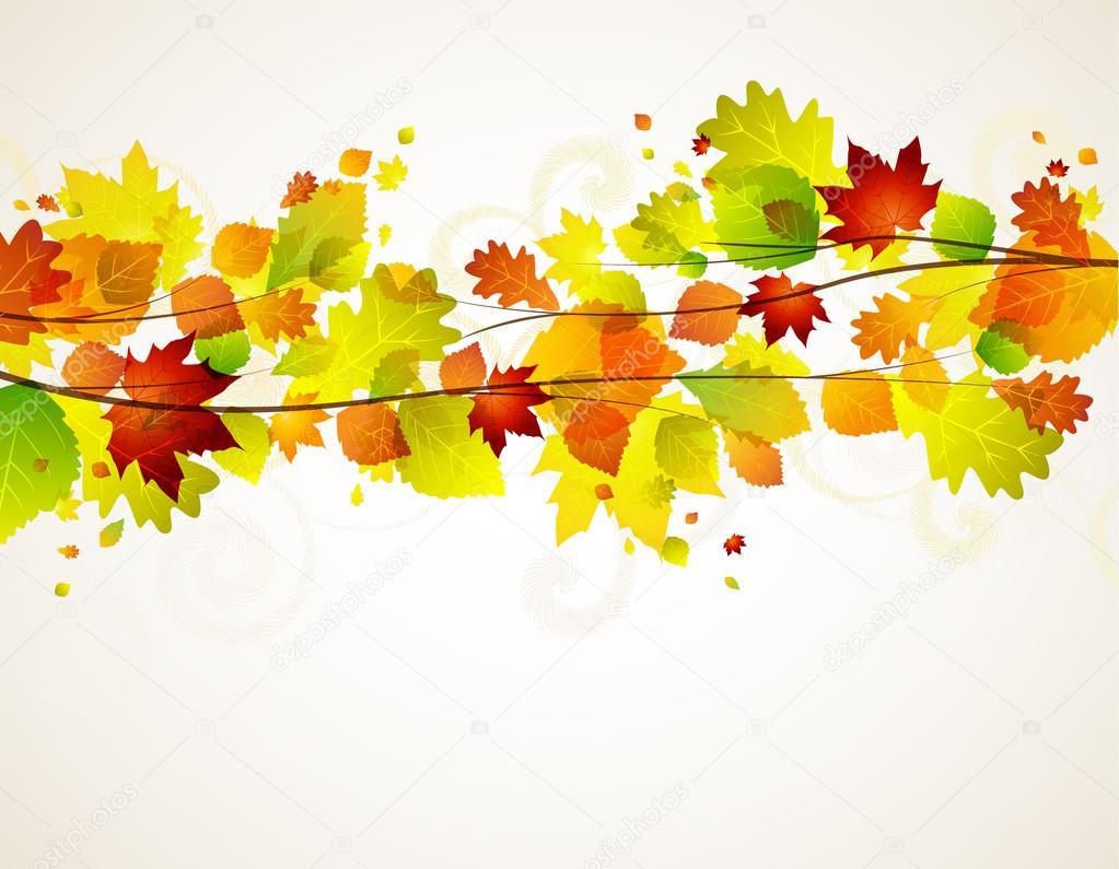 Hojas de oto o vector de stock odina222 27325369 - Descargar autumn leaves ...