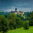 Stock Photo: Medieval castle Sovinec.