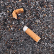 Stock Photo: Cigarette butts and ashes