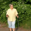 Mature Lady cultivate the Nordic walking — Stock Photo