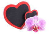 Heart, orchid, Valentine's Day — Stock fotografie