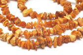 Amber necklace, natural and untreated — Stock Photo