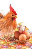 Easter, chicken, egg, isolated on a white background — Stock Photo