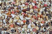 Breakfast cereals, oatmeal with candied fruits, raisins and nuts, as background — Stock Photo