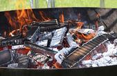 Barbeque Fire. — Stock Photo