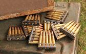 Gun Bullets. — Stock Photo