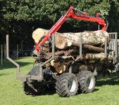 Agricultural Trolley. — Foto de Stock