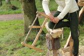 Wood Saw. — Stock Photo