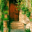 The wooden old door of a house — Stock Photo