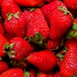 Organic fresh strawberries — Stock Photo