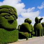 Sculpted trees topiary, Tulcan Ecuador — Stock Photo #13561657
