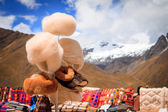 Views from the Andes Peru South America — Stock Photo